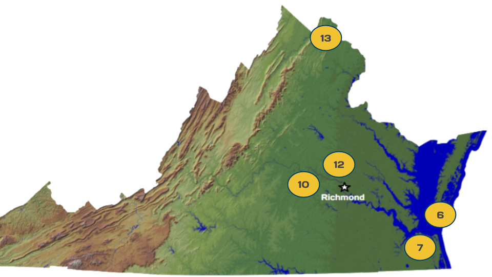 VA 2019 Senate Competitive Districts